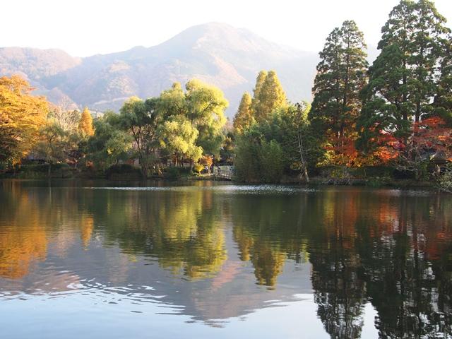 A11金鱗湖.jpg