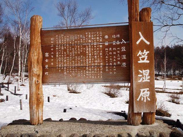 入笠山5A.jpg