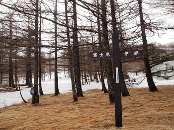 入笠山7.jpg