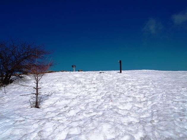 入笠山91.jpg